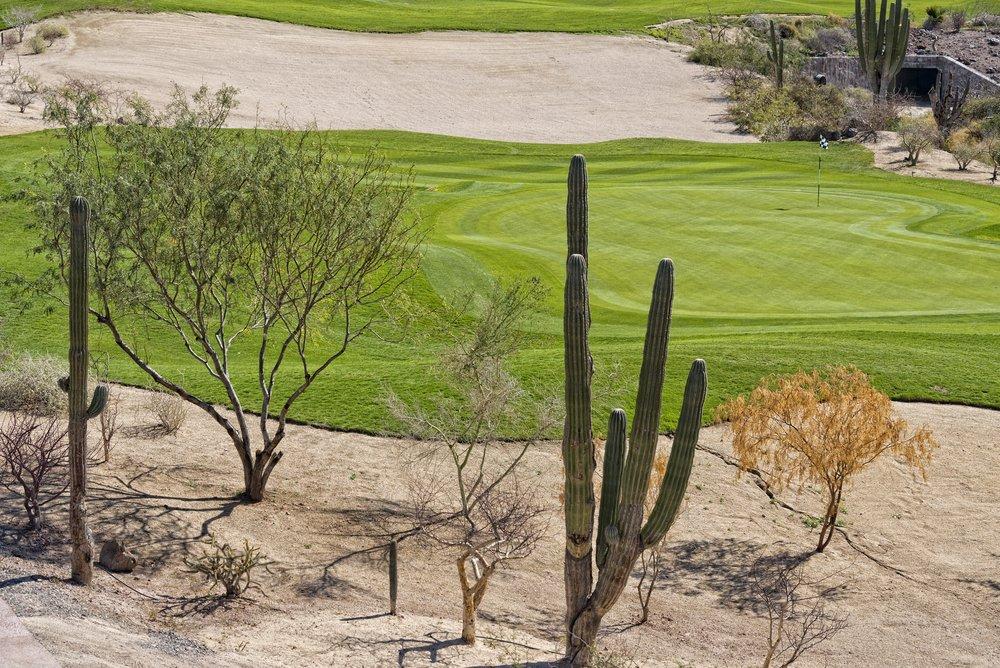 Sun City golf course image
